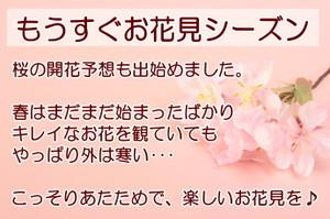 2014sakura